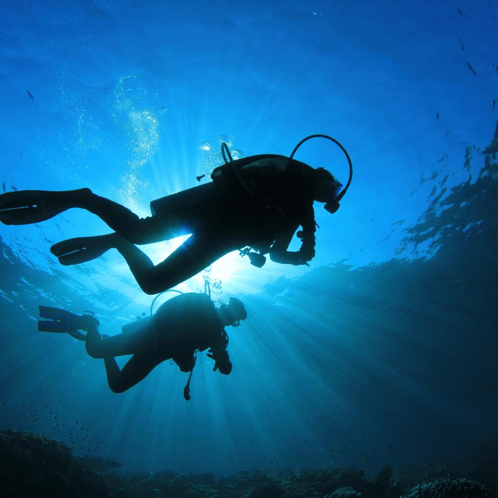 Dive Master Roatan