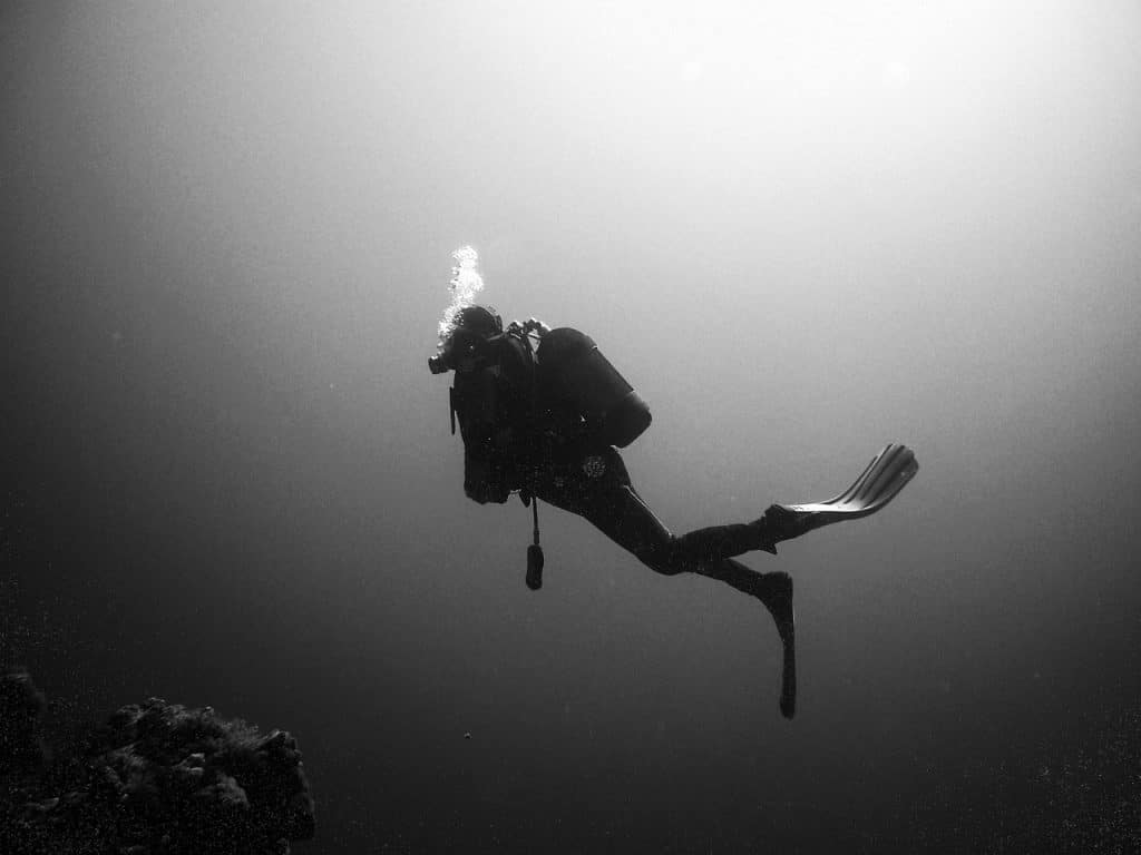divers, diving, underwater-378222.jpg