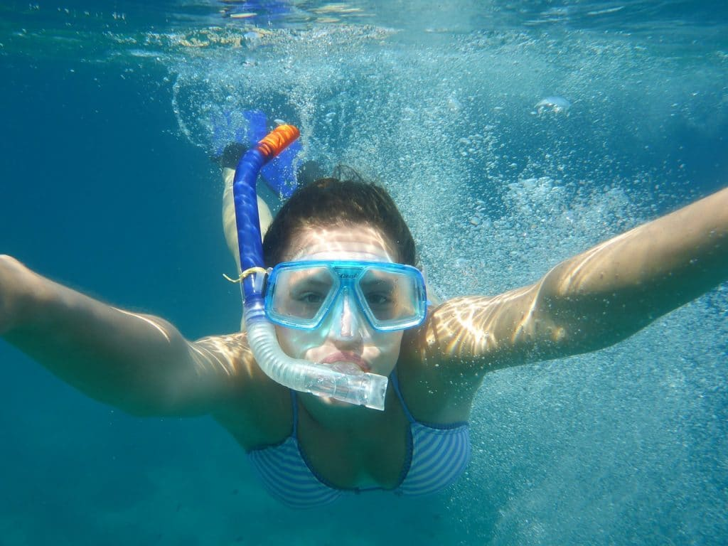diving, snorkeling, nature-2299609.jpg