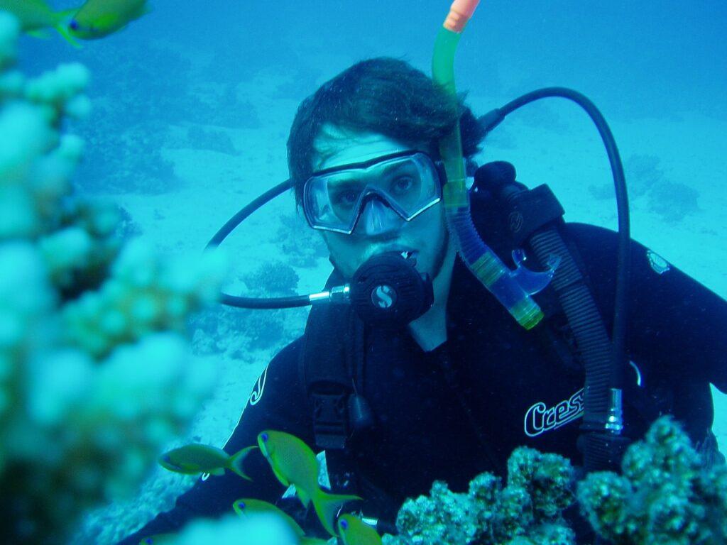 diving, water, divers-666016.jpg